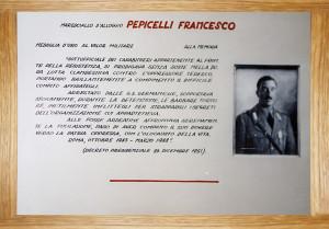 PEPICELLI biografia